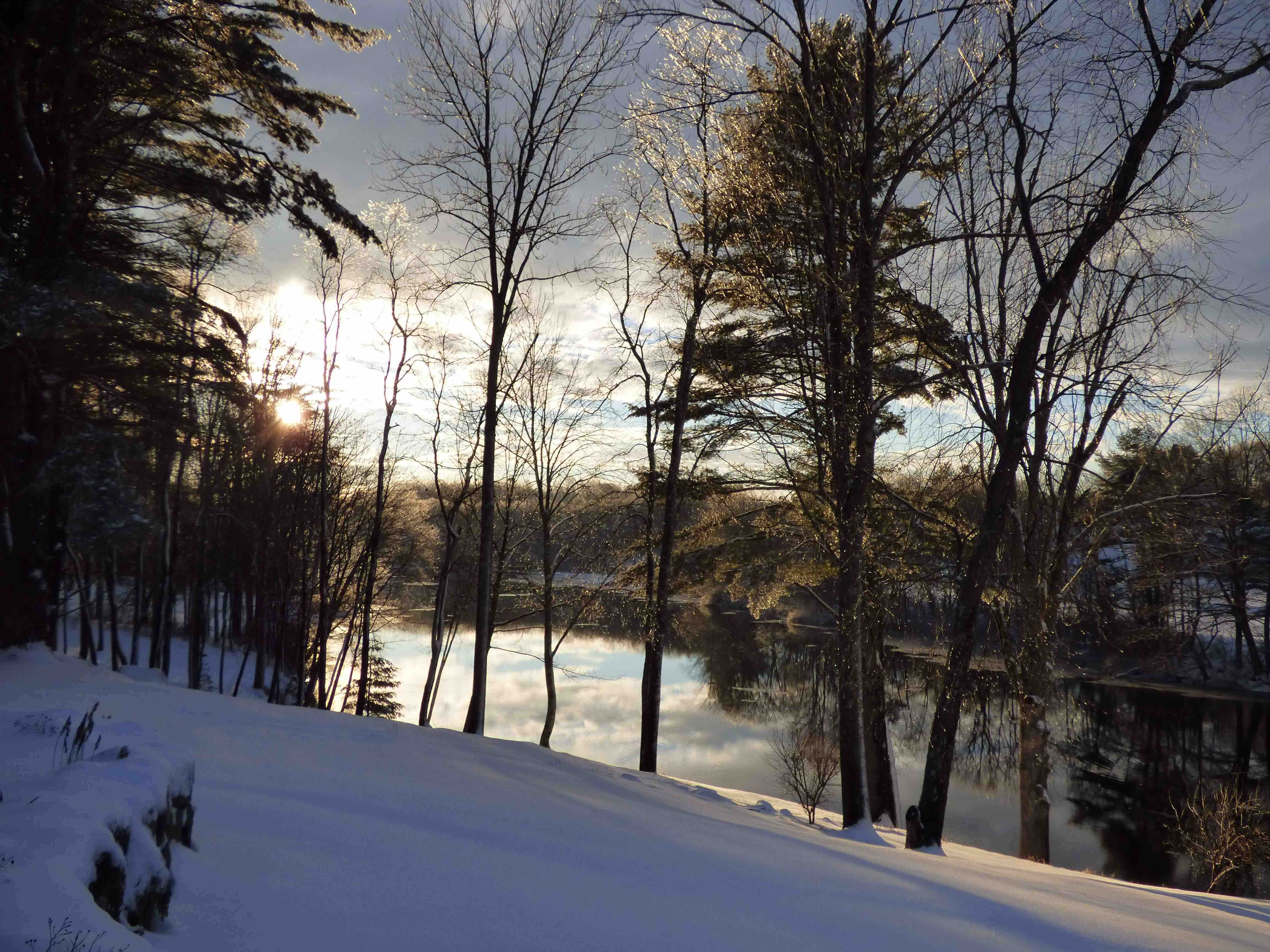 Salmon Falls River and garden, low tide, winter