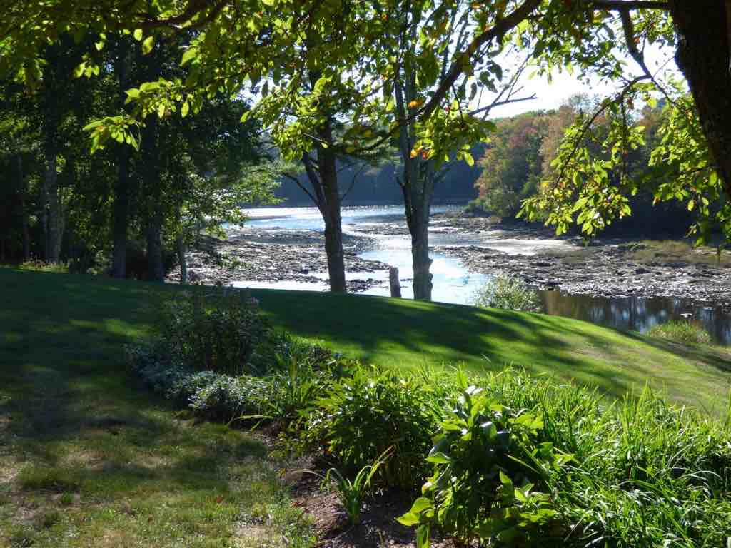 Salmon Falls River and garden, low tide, summer